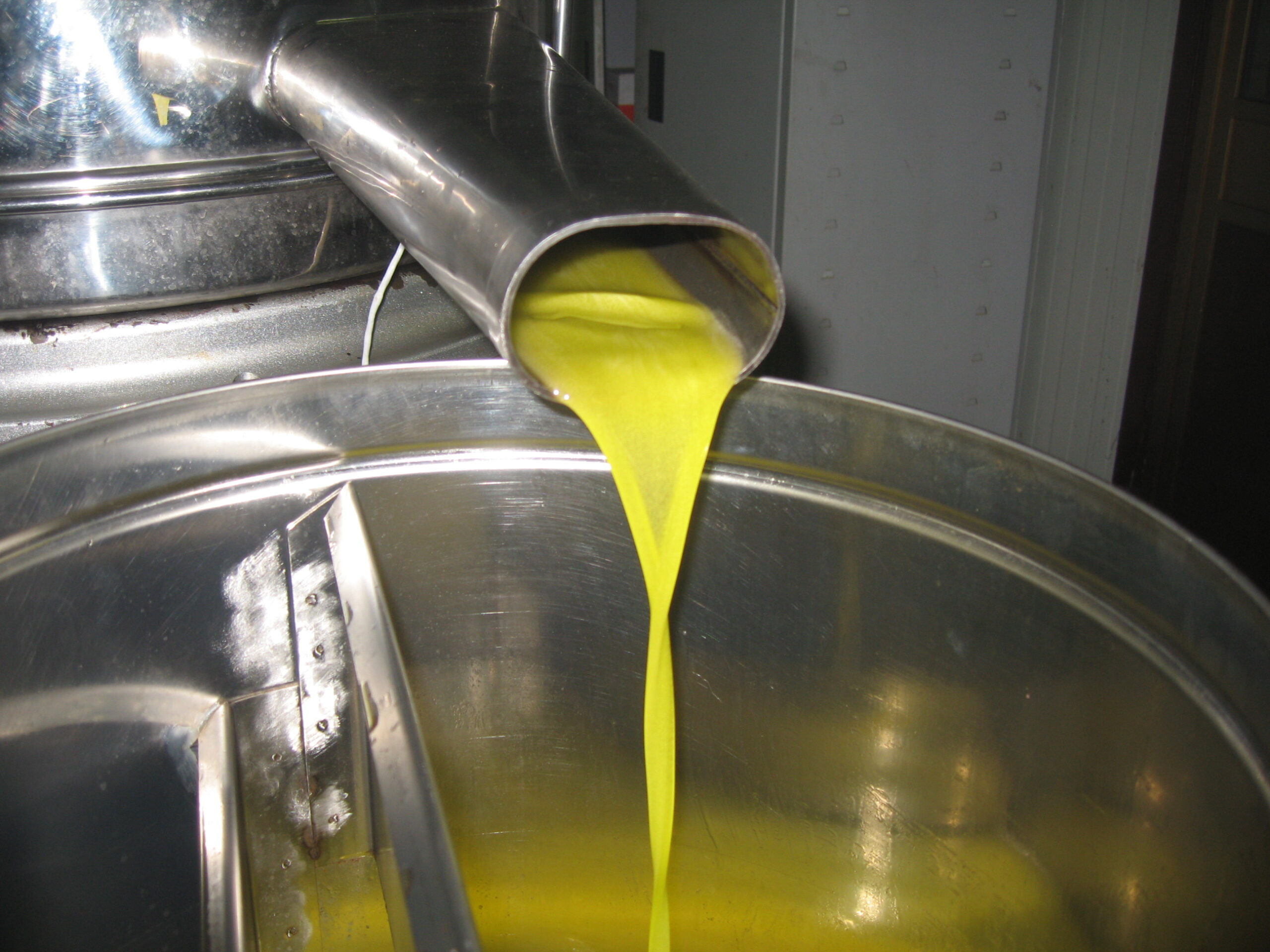 Nostro olio al frantoio